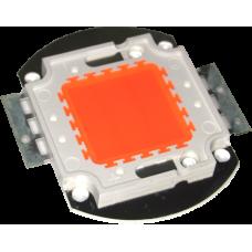 FITO LED 20W 45mil  400-660nm Красно-синий/ 3-3.6V